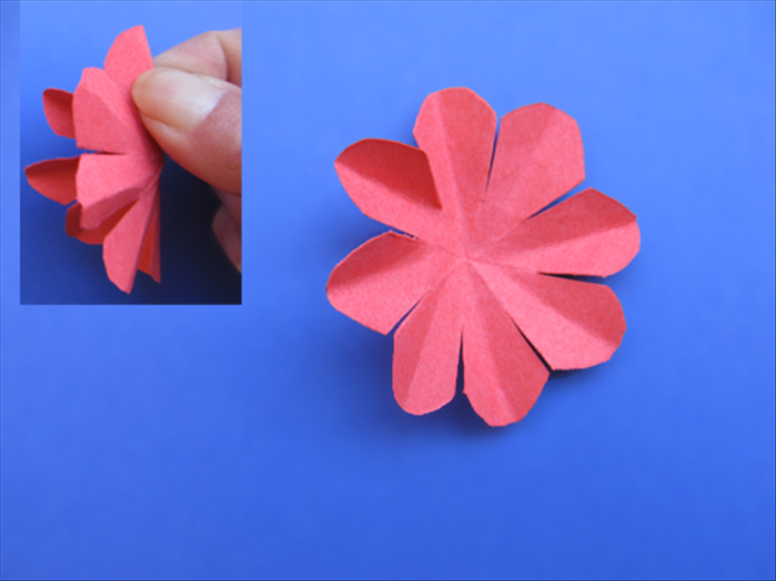 Fold each of the petals in half lengthwise