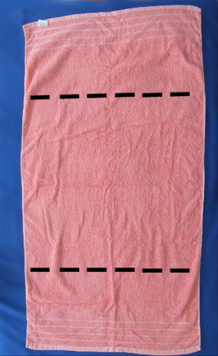 Lay the towel out flat and fold the short edges to meet in the middle