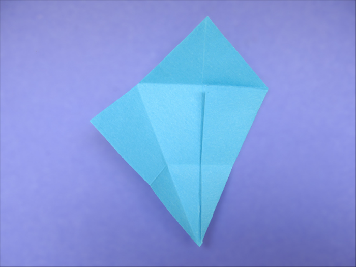 <p> Unfold the left flap.</p>  <p>  </p>