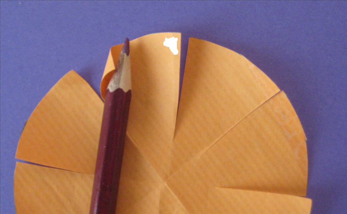 <p> Put glue on the right top side of a petal</p>  <p> Place your pencil at an angle on the left top corner and roll it up on the pencil.</p>