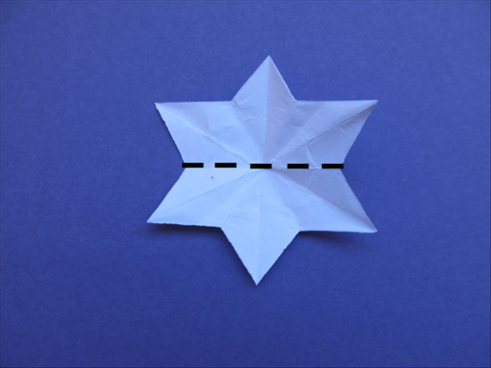 Unfold the star Fold it in half