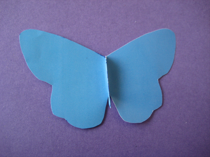 When the glue has dried completely, flip the butterfly over and lift up the folded body section.