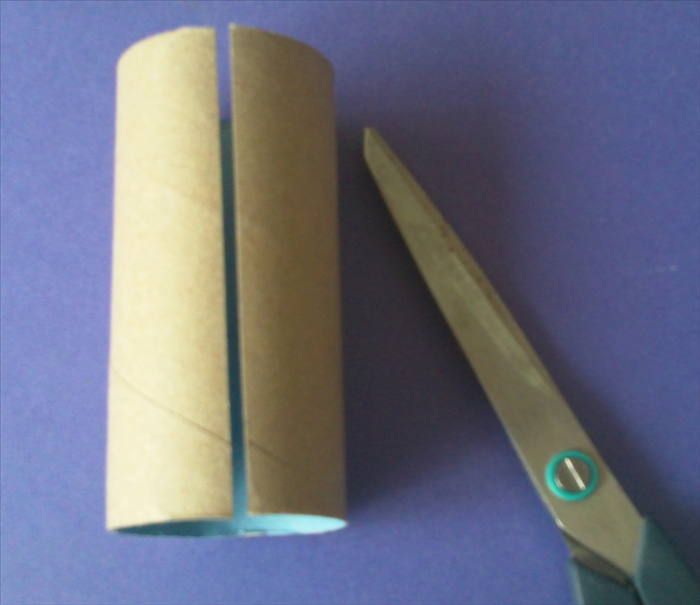 Cut 12 toilet paper rolls in half lengthwise