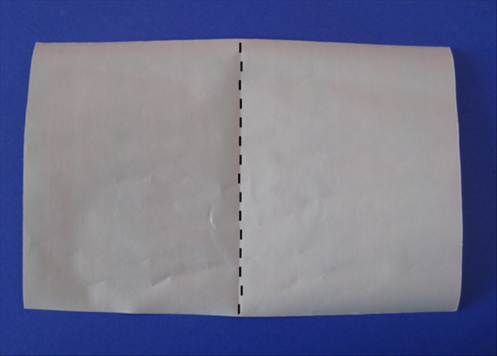Place the paper with the short edges at the sides.  Fold the paper in half vertically unfold