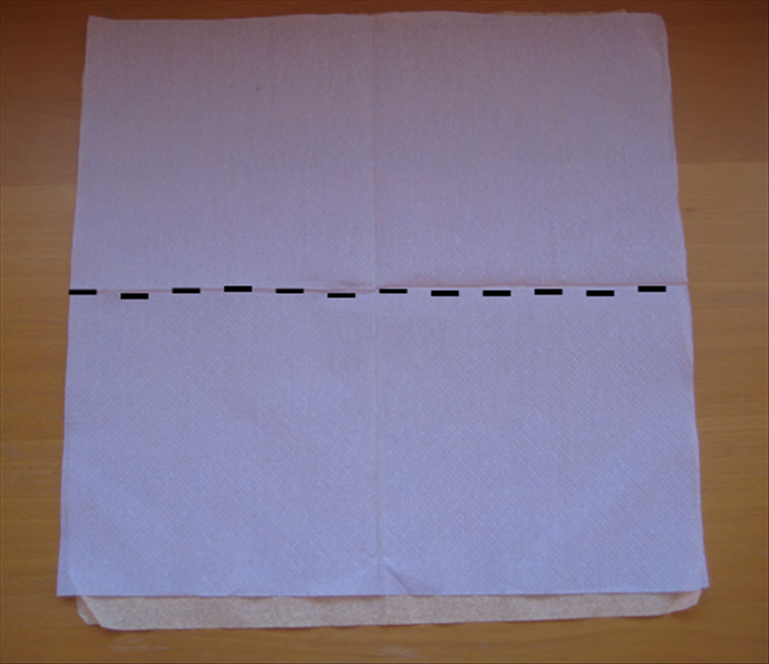 Open up the 2 napkins and place one on top of the other.