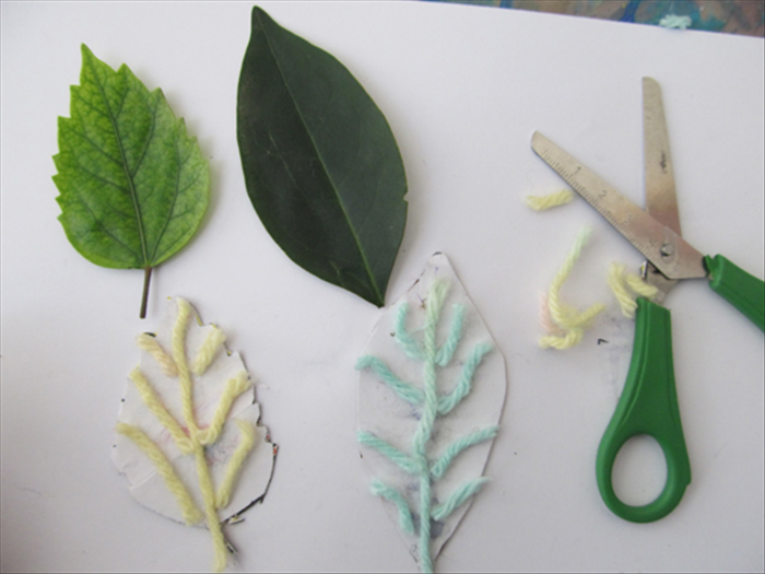 Glue more pieces of wool or chord where you see veins on the real leaves.