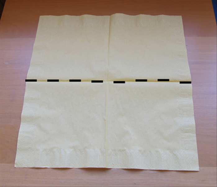 Unfold the napkin.  Fold the bottom edge up to the top edge.